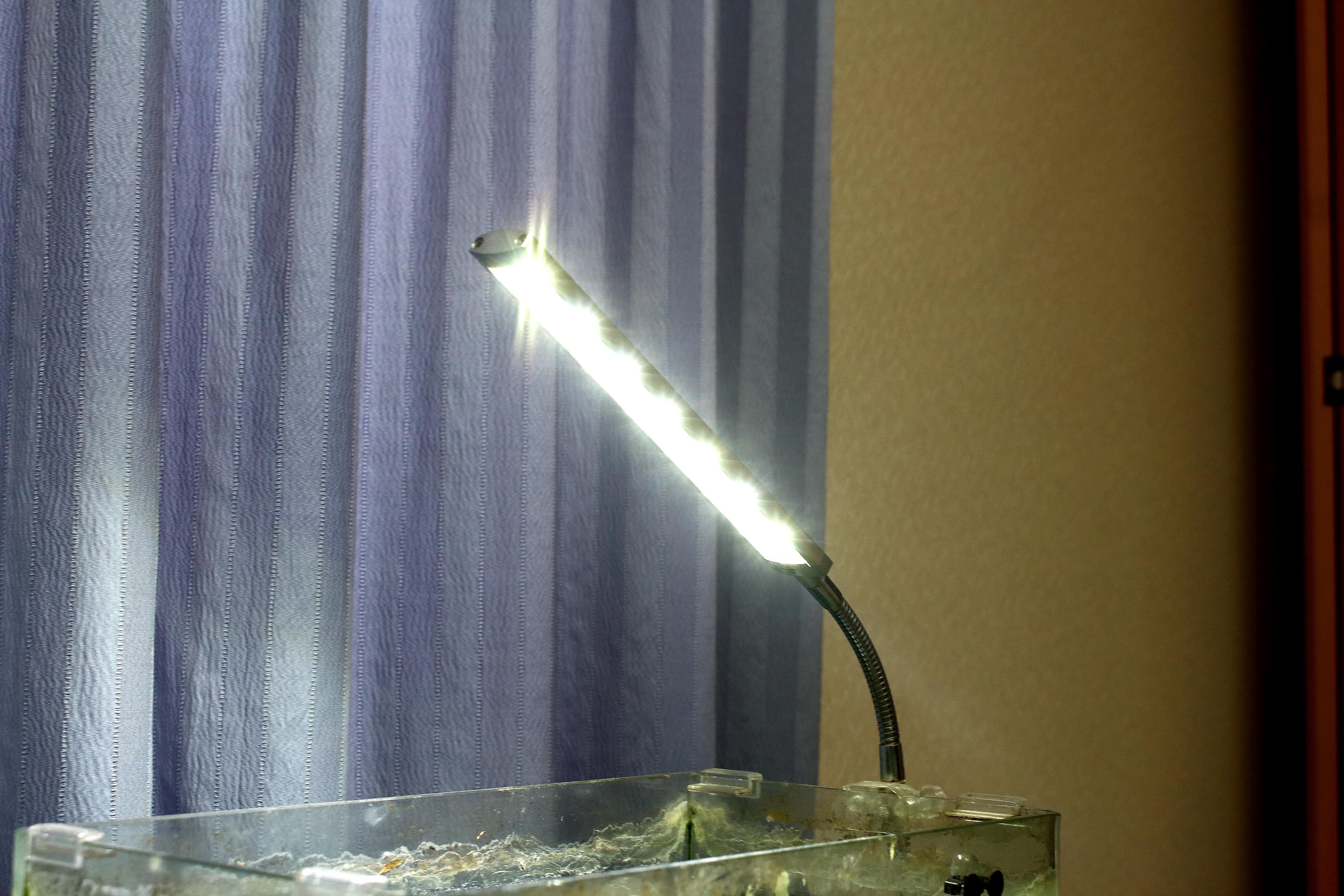 メダカの水槽のライト