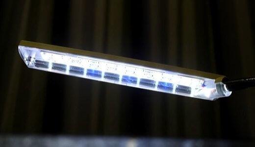 メダカに必要な照明とその効果