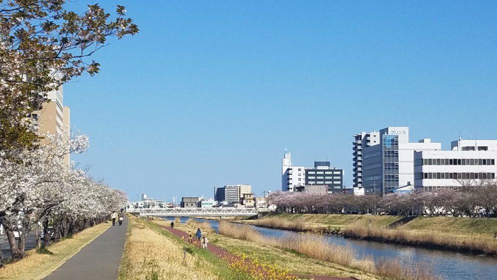 水戸の桜川